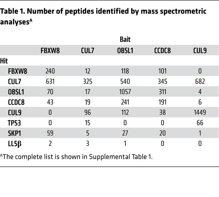 Number of peptides identified by mass spectrometric analysesA