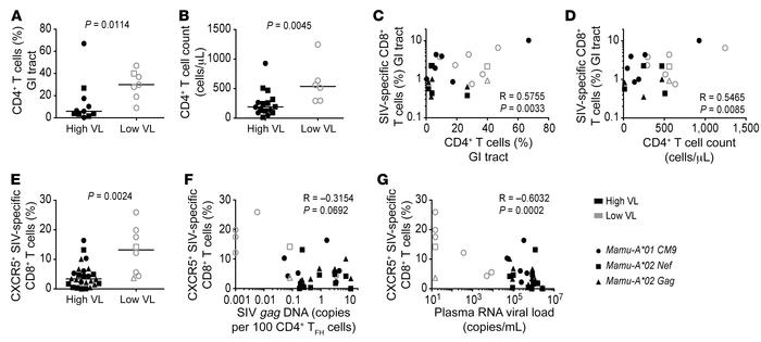Expression of CXCR5 on SIV-specific CD8+ T cells correlates inversely wi...