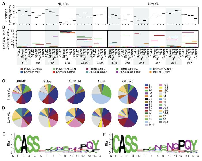 Clonotypic architecture of CM9-specific CD8+ T cell populations. (A) Rep...