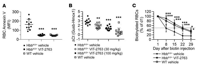 VIT-2763 decreased apoptosis and extended the life span of RBCs in Hbbth...