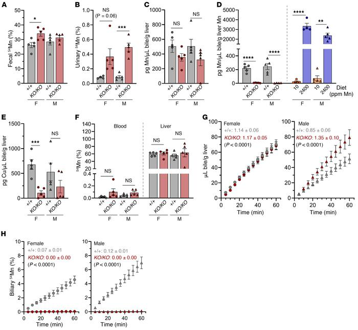 Slc30a10 is essential for systemic and hepatobiliary Mn excretion. Eight...