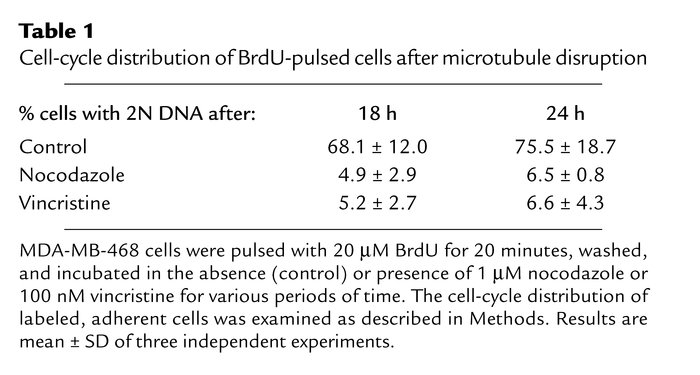 Cell-cycle distribution of BrdU-pulsed cells after microtubule disruption