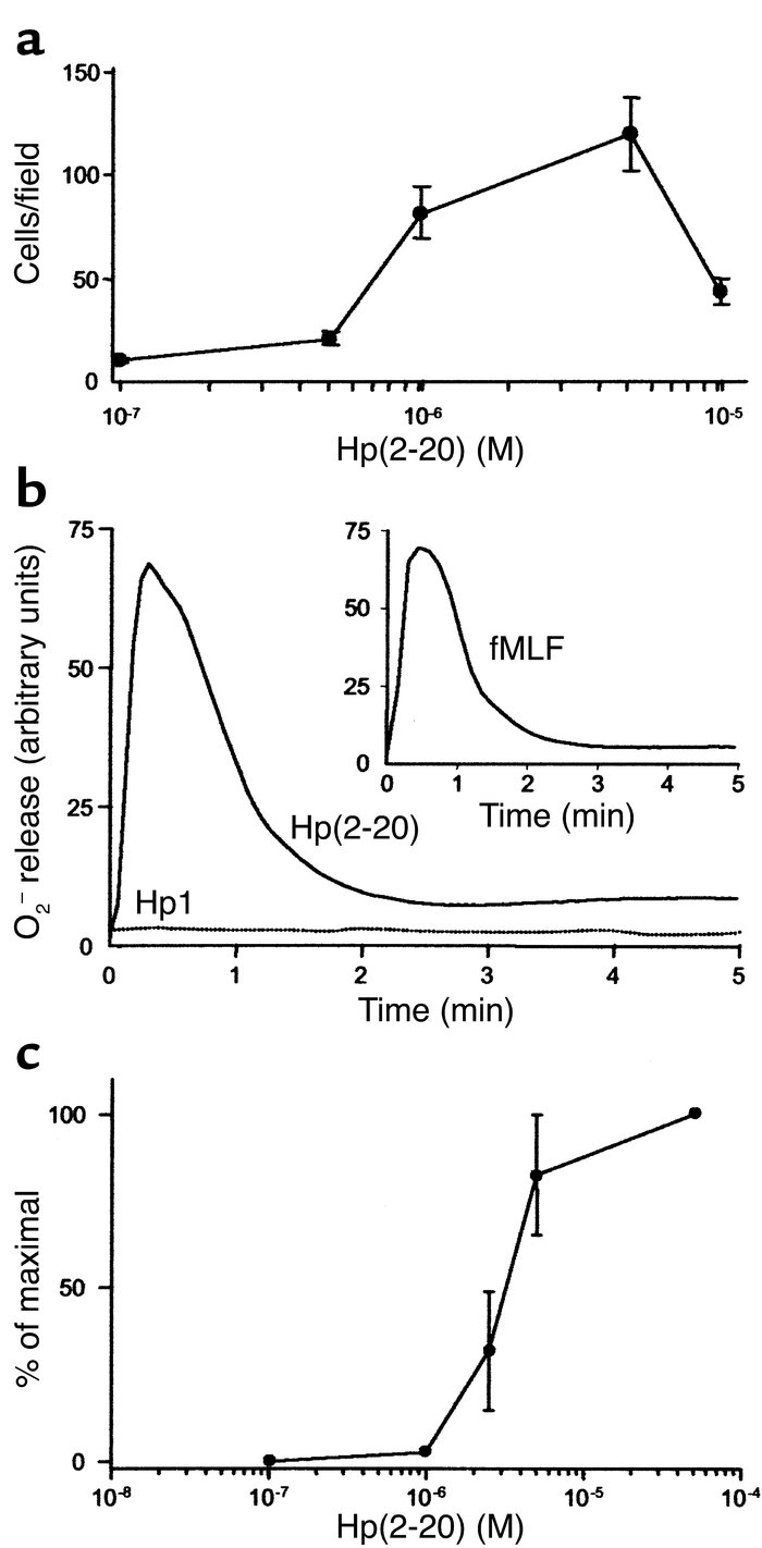 Hp(2–20)–induced monocyte chemotaxis and activation of the monocyte NADP...