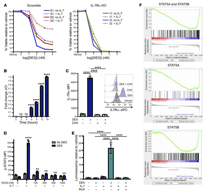 DEX exposure augments IL-7R expression and downstream JAK/STAT signaling...