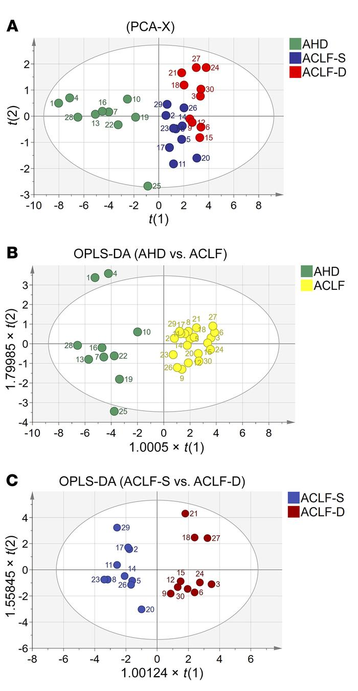 PCA and OPLS-DA of candidate biomarkers. (A) Unsupervised PCA model of p...