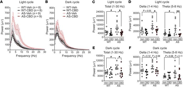 Two weeks of CBD administration normalizes LFP in AS model mice. (A and ...
