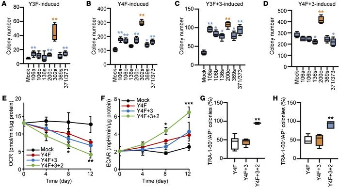 An improved reprogramming method combining Y4F and metabolism-regulating...