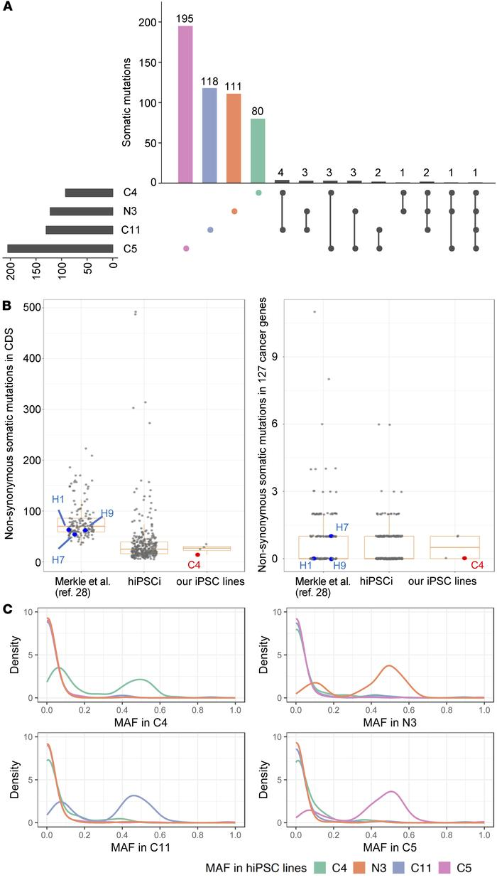 Genomic integrity of hiPSC lines generated from skin biopsy of a sporadi...