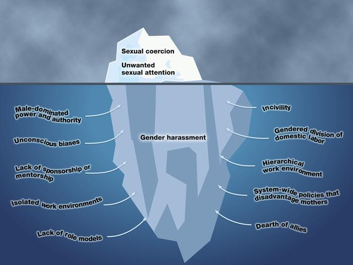"Overt sexual coercion and unwanted sexual attention represent only ""the ..."