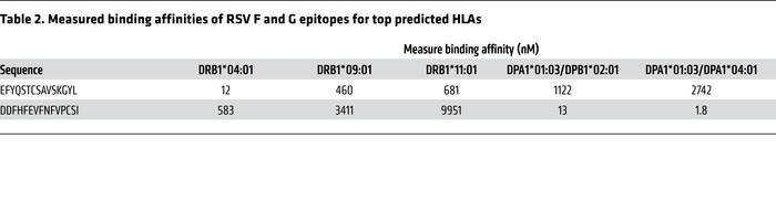 Measured binding affinities of RSV F and G epitopes for top predicted HLAs