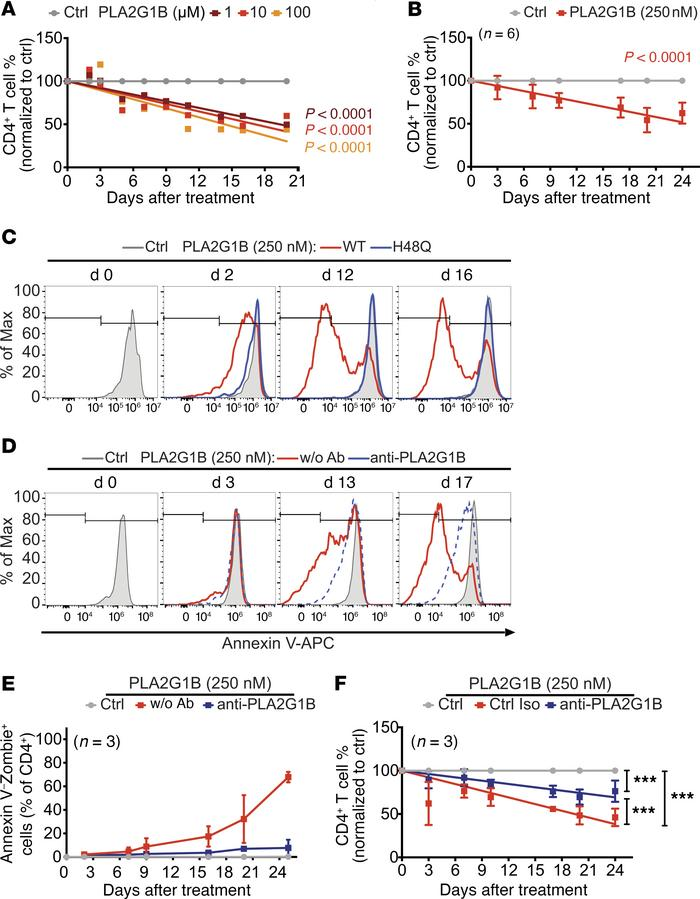PLA2G1B acts on dying CD4+ T cells and reduces CD4+ T cell survival. (A ...