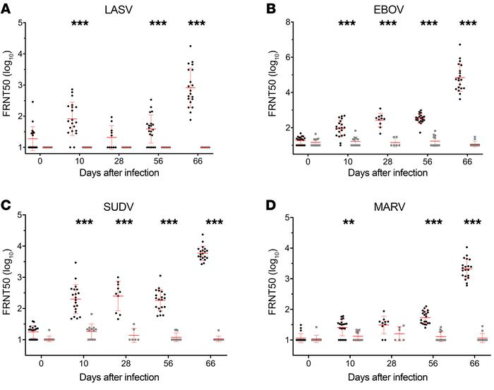 Filovirus and LASV GP–specific neutralization antibody responses in maca...