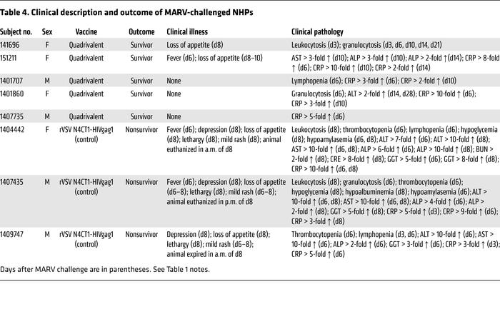 Clinical description and outcome of MARV-challenged NHPs