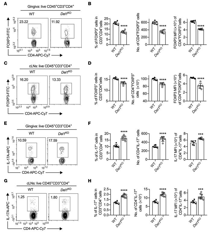 DEL-1 deficiency decreases Treg numbers while it increases Th17 cells du...