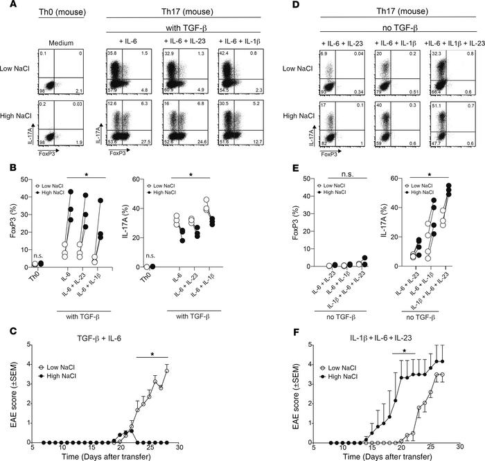 TGF-β governs the reciprocal enhancement of pro- versus antiinflammatory...