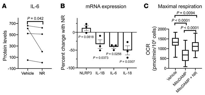 NR attenuates MitoDAMP-induced PBMC respiratory impairment and proinflam...