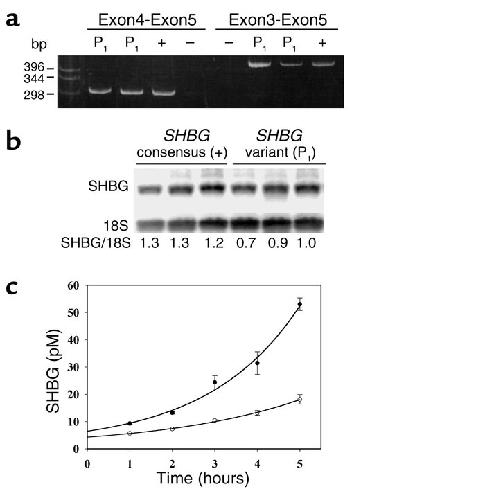 Expression of the MspI variant SHBG allele (P1) and the consensus SHBG a...