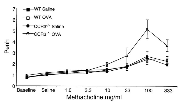 CCR3–/– mice epicutaneously sensitized with OVA do not develop AHR to Mc...