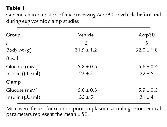 General characteristics of mice receiving Acrp30 or vehicle before and d...