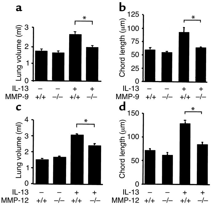 Effects of MMP deficiency on IL-13–induced alterations in lung volume an...