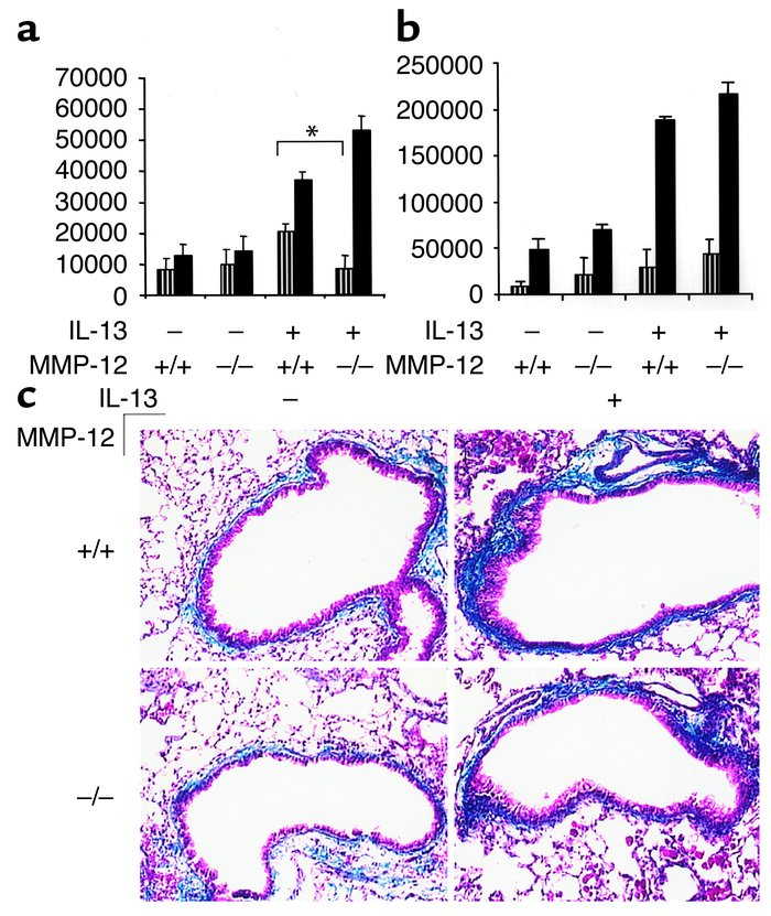 Effects of MMP-12 on IL-13–induced TGF-β1 bioactivity and tissue fibrosi...