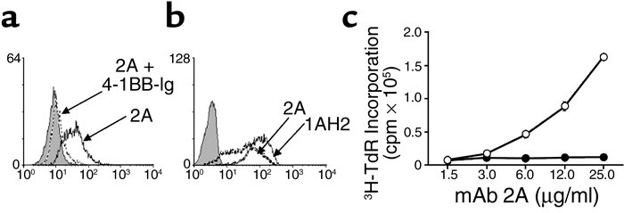 mAb 2A binds murine 4-1BB and costimulates T cell growth in vitro. (a) N...