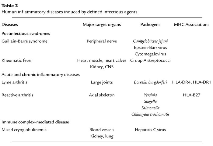 Human inflammatory diseases induced by defined infectious agents
