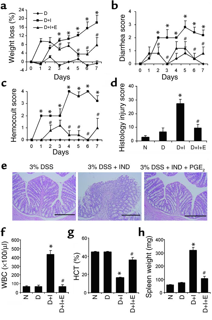 Induction of colitis by indomethacin in mice treated with 3% DSS and sup...