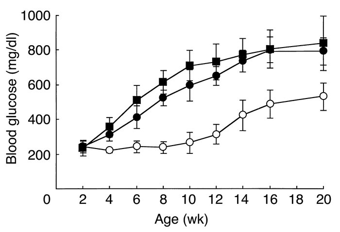 Development of diabetes in male Ins2WT/C96YChop+/+, Ins2WT/C96YChop+/–, ...