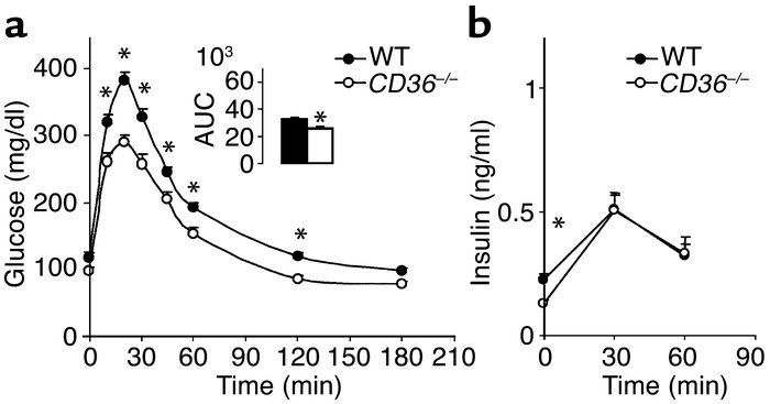 Response of blood glucose (a) and insulin (b) to a glucose load in CD36-...