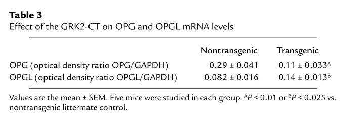 Effect of the GRK2-CT on OPG and OPGL mRNA levels