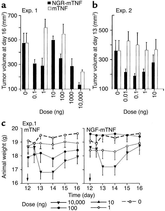 Effect of mTNF and NGR-mTNF on tumor growth and body weight of animals b...
