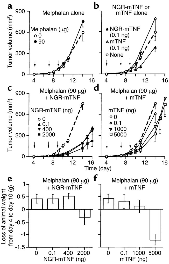 Effect of melphalan, alone (a) or in combination with NGR-mTNF (c) or mT...