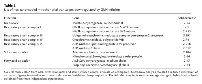 List of nuclear-encoded mitochondrial transcripts downregulated by GlcN ...