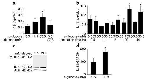 Glucose induces IL-1β expression and release in human islets. (a) Secret...