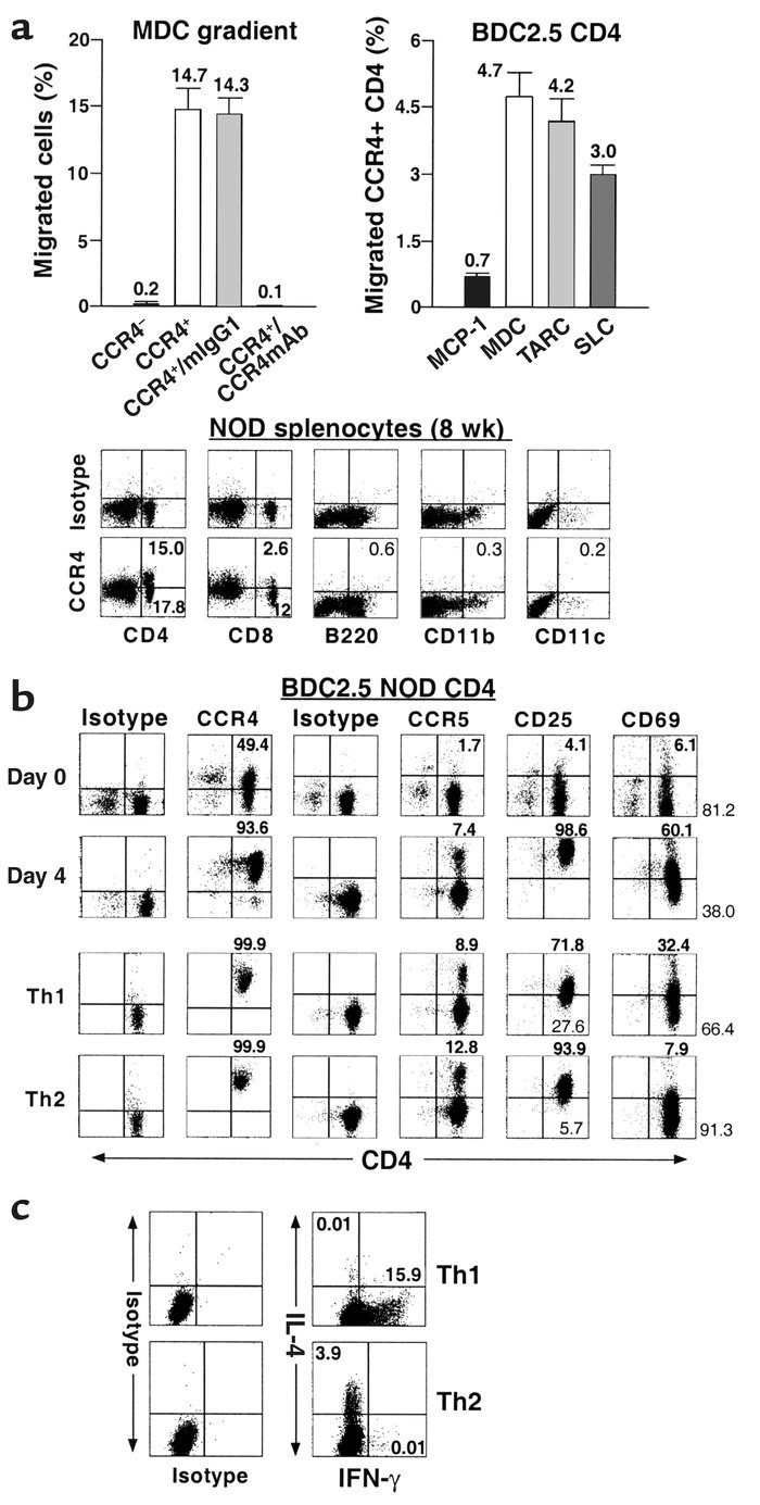 Functional responsiveness of CCR4+ T cells to the murine CCR4 ligand MDC...
