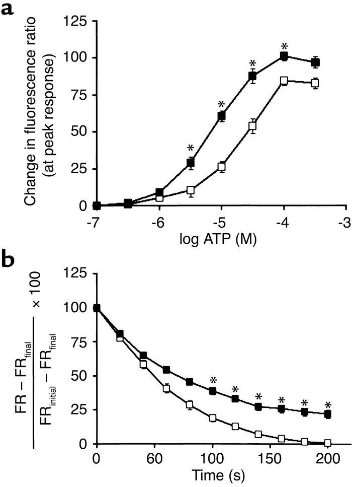 JCI - Hypertension and prolonged vasoconstrictor signaling