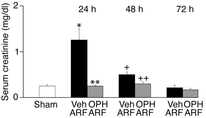 Mice treated with OPH-001 are functionally protected against ischemic AR...