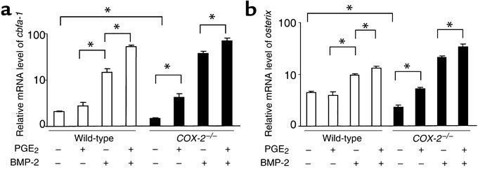 COX-2 regulates cbfa1 and osterix in bone marrow stromal cell cultures. ...