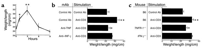 (a) Time course of effect of anti-CD3 mAb on jejunal wt/l ratio. Mice we...