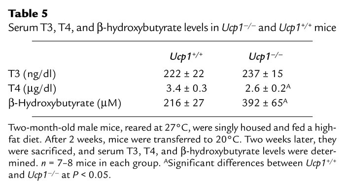 Serum T3, T4, and β-hydroxybutyrate levels in Ucp1–/– and Ucp1+/+ mice