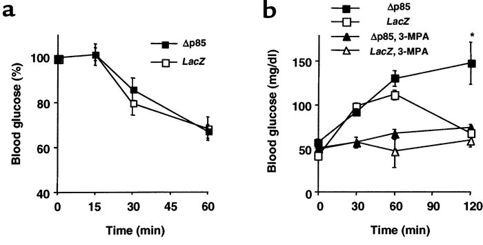 Effects of Δp85 expression in the liver on insulin tolerance and pyruvat...