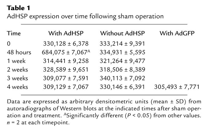 AdHSP expression over time following sham operation