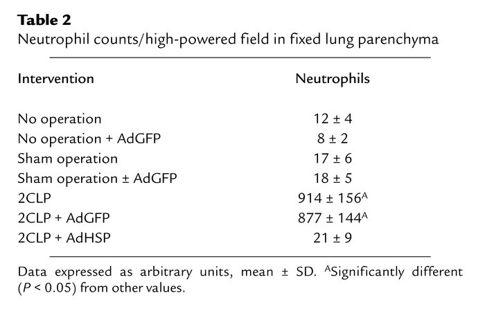 Neutrophil counts/high-powered field in fixed lung parenchyma