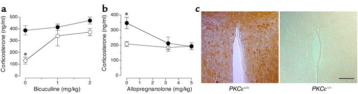 GABAA receptor regulation of corticosterone in PKCε-null mice. (a) Corti...