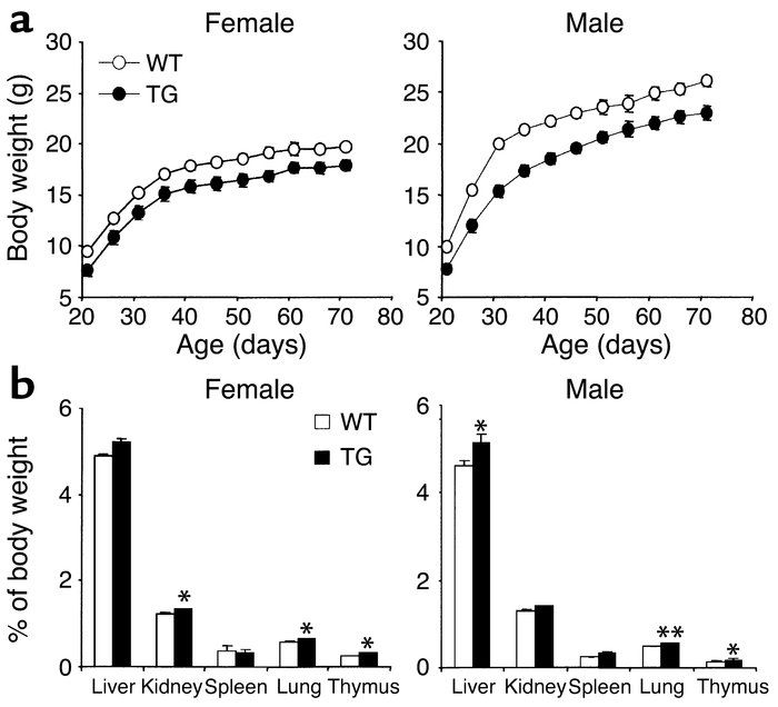 Growth curve and organ weight of 3AS aP2-Pref-1/hFc transgenic mice. (a)...