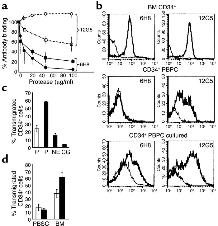 Mobilized CD34+ PBPCs express a CXCR4 molecule truncated in the first ex...