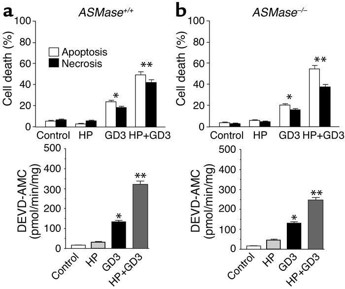 Cytotoxicity of GD3 in mouse hepatocytes. ASMase+/+ (a) and ASM–/– (b) h...