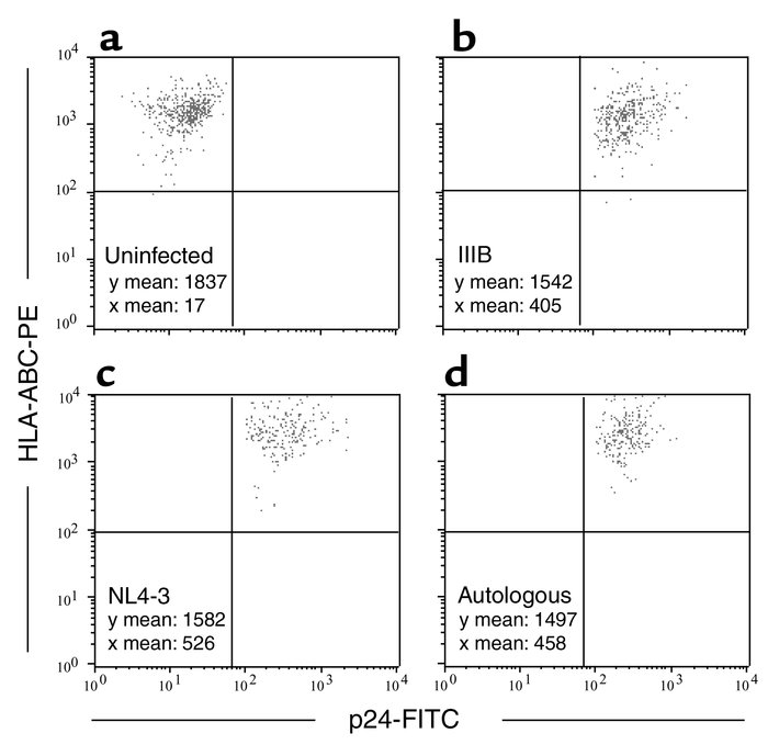 Flow cytometric analysis of MHC class I and p24 expression on HIV-infect...