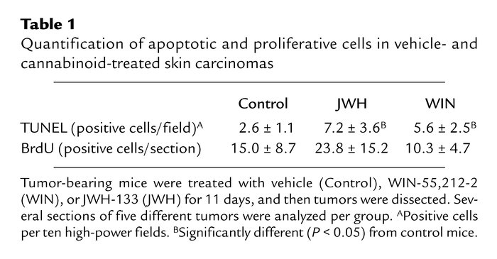 Quantification of apoptotic and proliferative cells in vehicle- and cann...